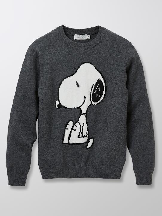 Exklusiver Strick-Kinder-Pullover Cyrillus X Peanuts® – Collection Snoopy